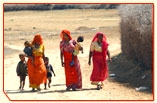 Rajasthan Culture Tour